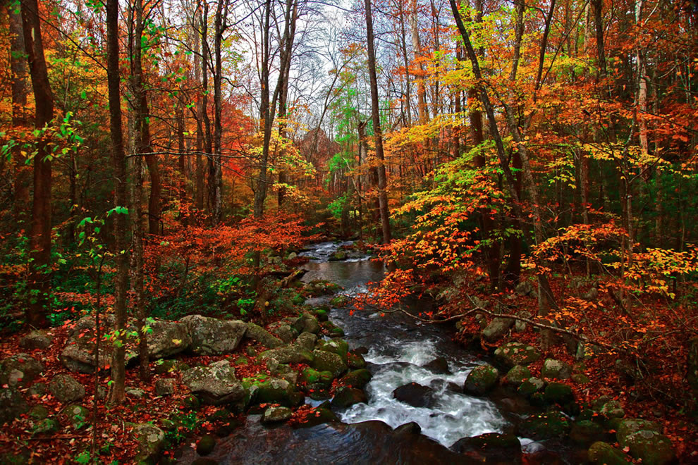 Autumn in Tennessee, Fall Creek, Great Smoky Mountains