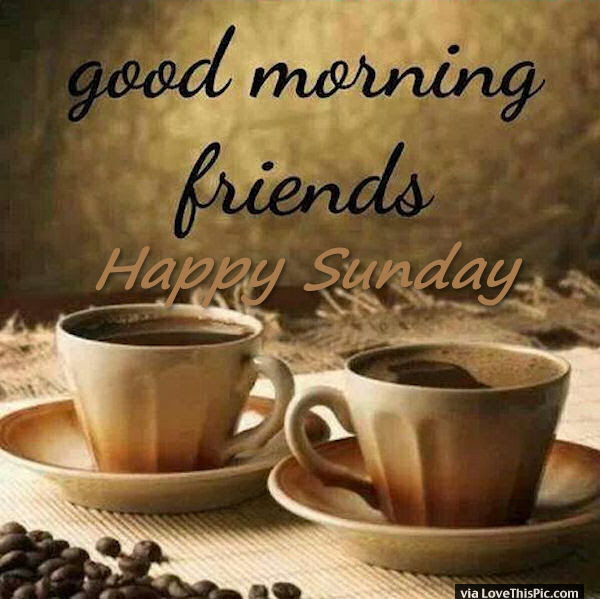 Good Morning Friends Happy Sunday Pictures Photos And Images For