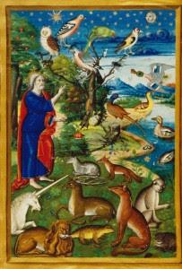 A Criação - representação medieval