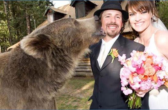 Αστείες φωτογραφίες γάμων (25)