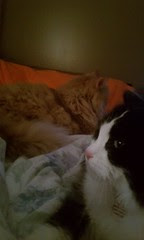 Josie and Jasper