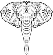 38 Elefanten Zum Ausmalen Besten Bilder Von Ausmalbilder