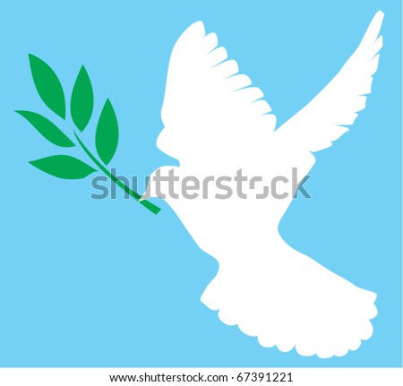 stock vector vector white dove with olive