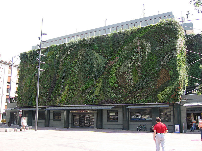 File:Mur vegetal avignon jour1.jpg