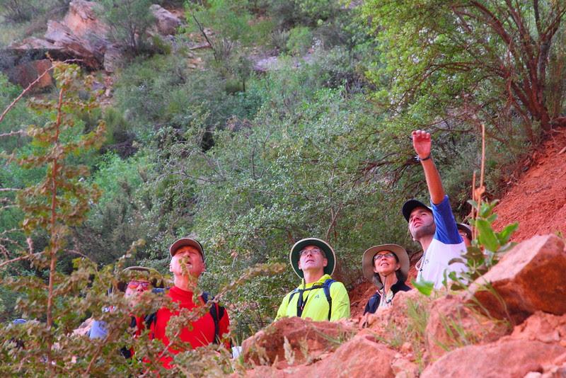 IMG_1944 Bright Angel Trail