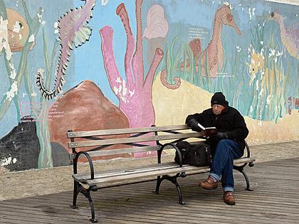 BoardwalkReaderBlog