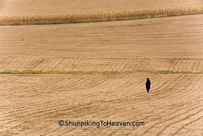 The Long Walk Home, Amish Schoolteacher at the End of the Day, Filmore County, Minnesota