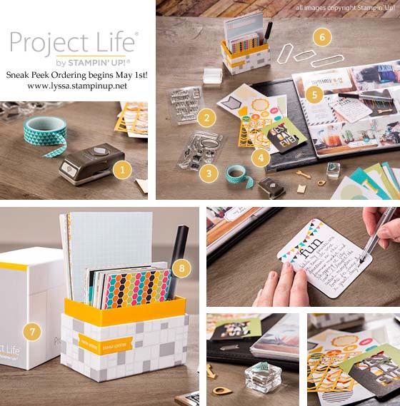 Learnprojectlifewithlyssa