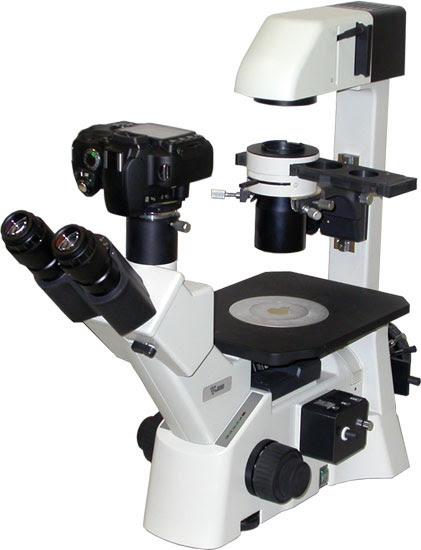 Ix 51 2 Inverted Compound Epi Fluorescence Microscope Tritech