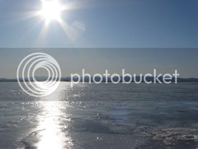 harbor ice