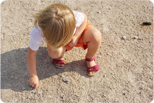 collecting rocks web.jpg