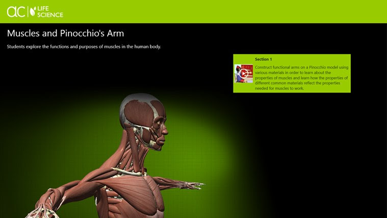 AC Life Science: Muscles and Pinocchio's Arm snímek obrazovky 0