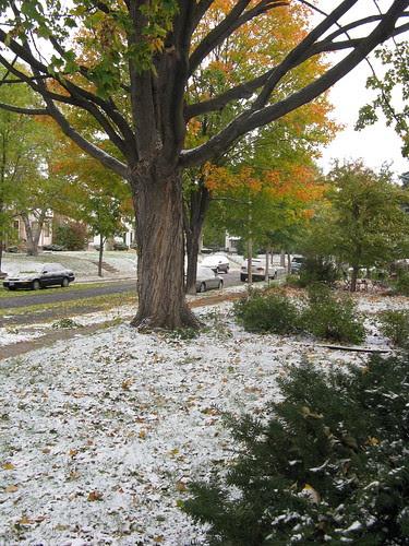 October 10: snow, 17 degree windchill...