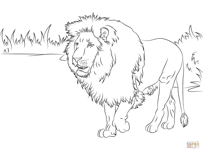 Stattlicher Löwe