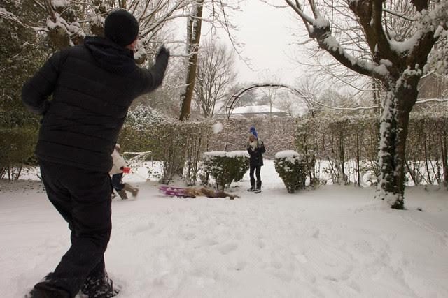 Winter Wonderland 7