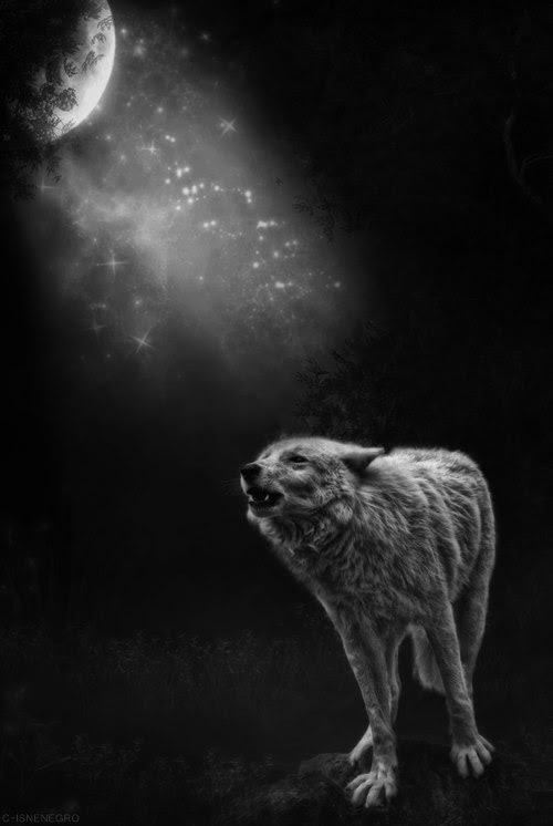 The moon has risen. The wolves are howling. And THE DEAD are ready to play. THE DEAD GAME by Susanne Leist http://www.amazon.com/author/susanneleist