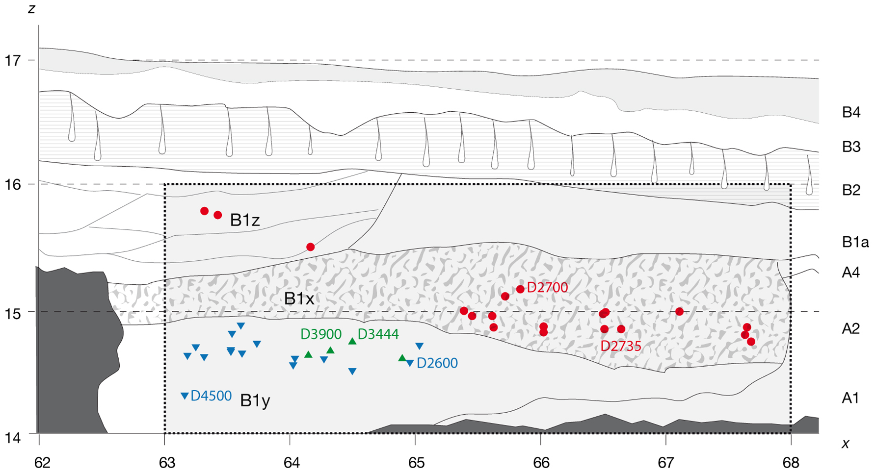 Figure 2 Projected stratigraphic location of the main hominin remains recovered from Block 2.