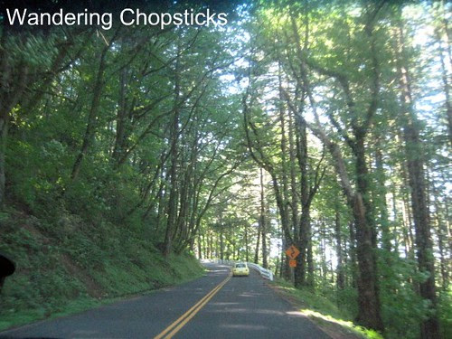 Day 4.7 Historic Columbia River Highway - Columbia River Gorge - Oregon 1