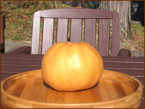 03 pear head