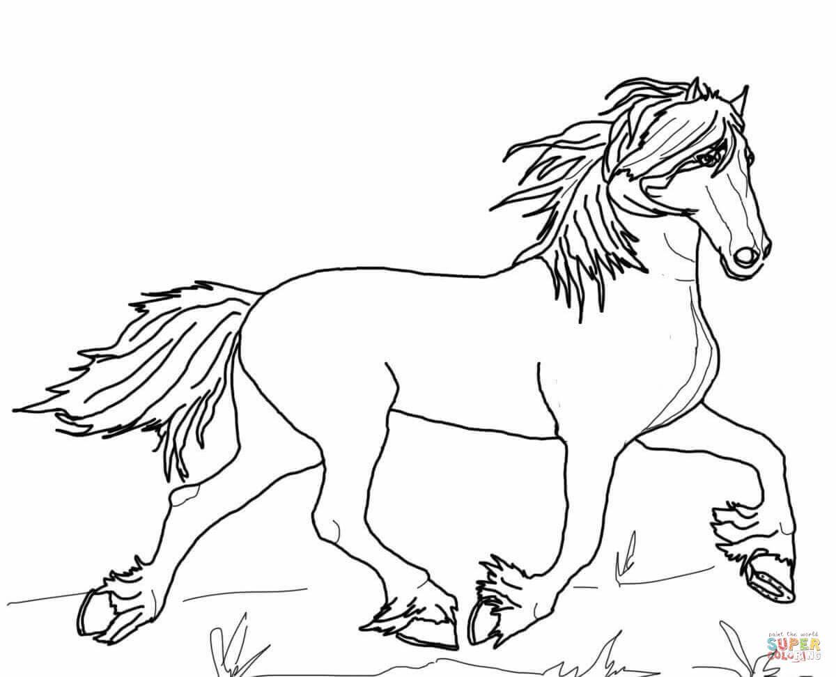10 kleurplaten paarden en honden krijg duizenden