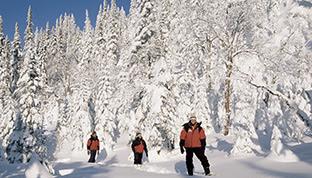 Scoprite i nostri parchi sotto la neve