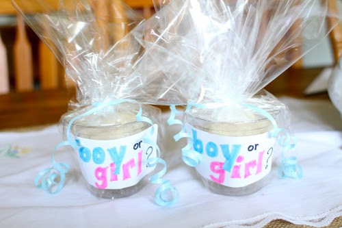 Top Gender Reveal Party Favor Ideas