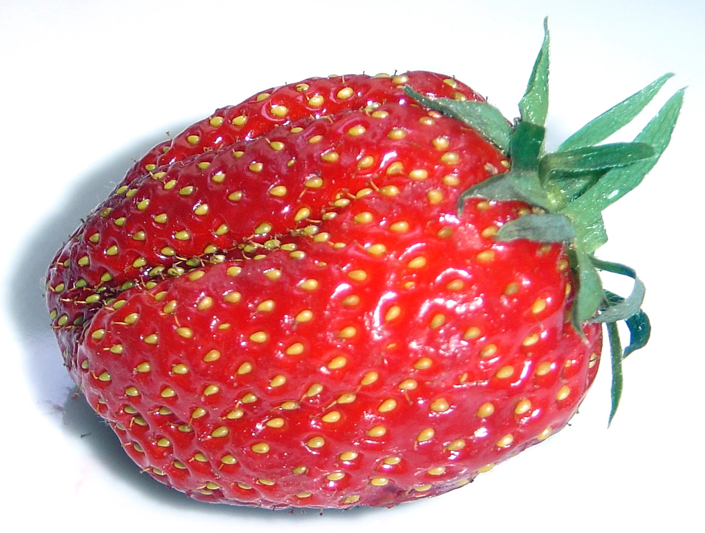 large bright red juicy strawberry with visible ovaries