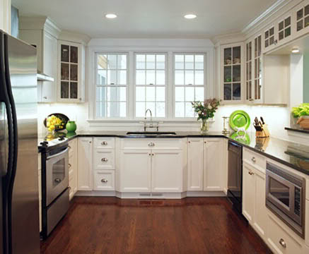 U Shaped Kitchen Cabinets ~ Modern Design Pictures