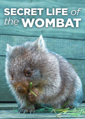 Secret Life of the Wombat - Season 1