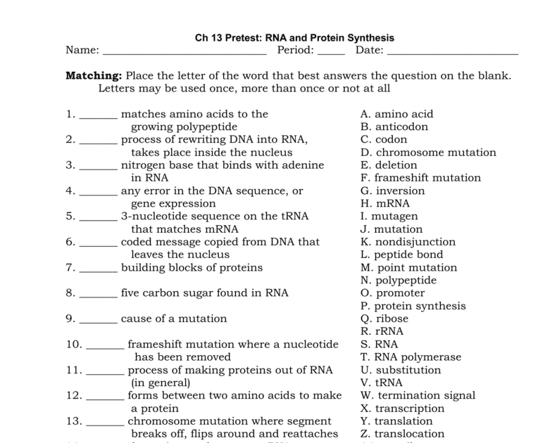 Chapter 13 Dna Rna And Proteins Answer Key - ProteinWalls