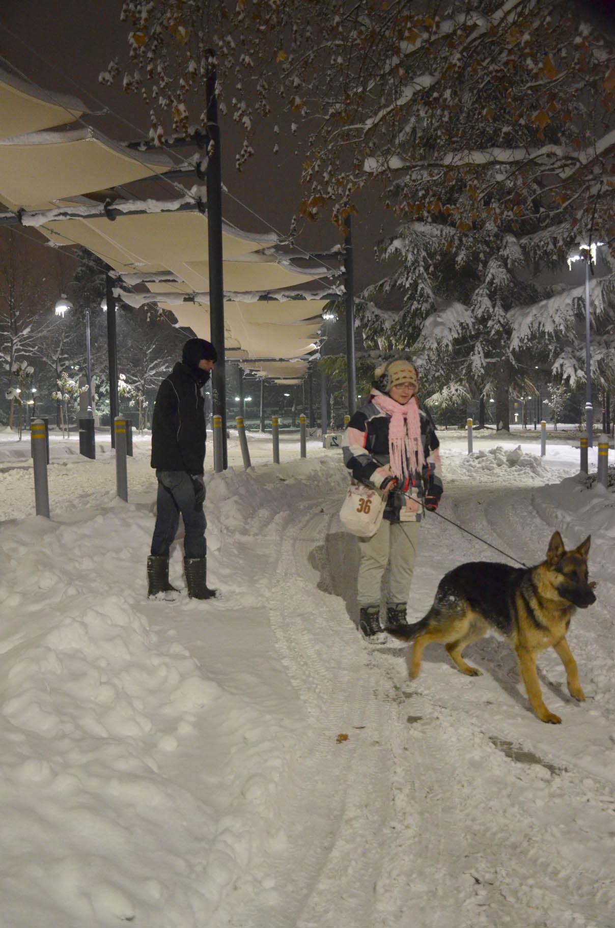 Λαρισα χιονι (6)