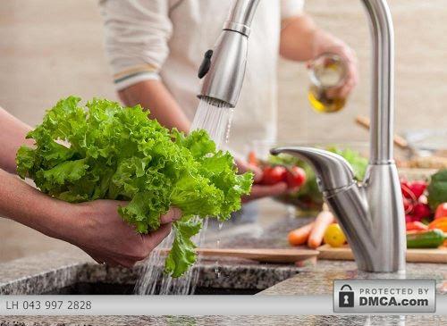 An toàn vệ sinh thực phẩm với chậu rửa bát Gorlde