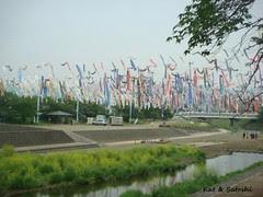 takatsuki562012 (3)