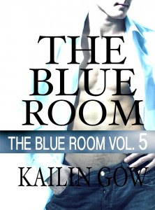 Blue Room Vol. 5 Cover