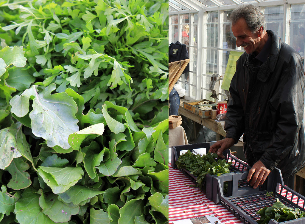 The Salad Man