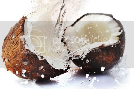 photo 02 Top 10 Benefits of Coconut Water_zps9shr09vp.jpg