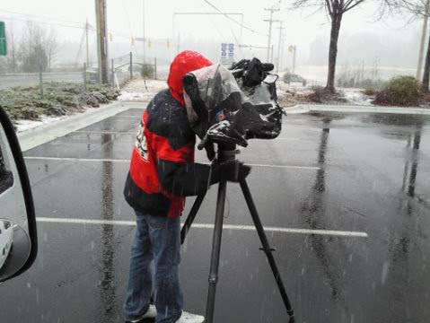 Clapper in the Snow