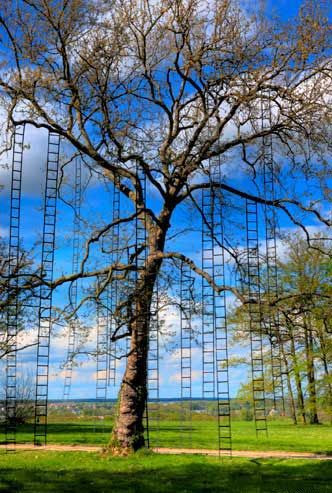 The Tree with Ladders by François Méchain