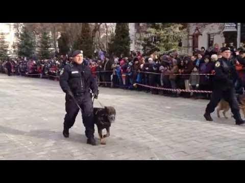 VIDEO Parada militară de Ziua Națională a României - Suceava, 1 decembrie 2016
