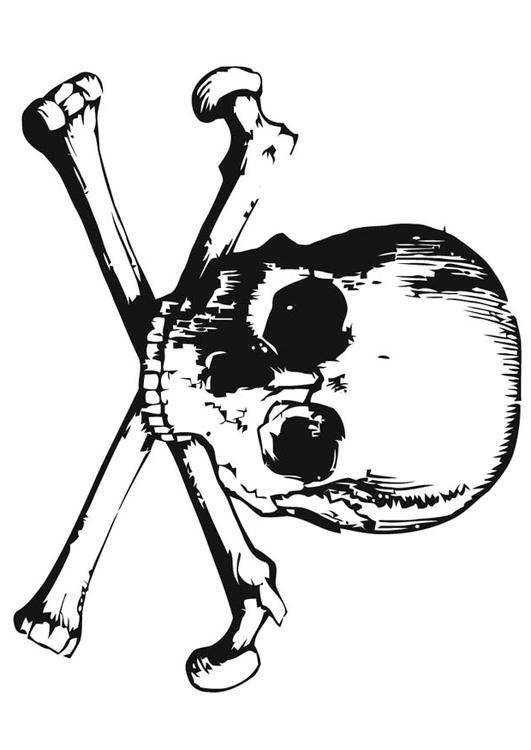 Disegno Da Colorare Teschio Cat 16639