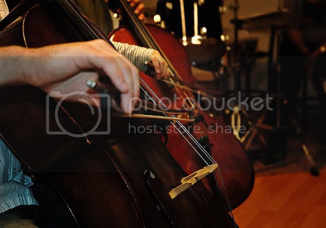 Cello Duet: A Close Look [enlarge]