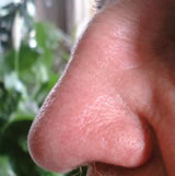 Nose: Practically illegal in 1950s England