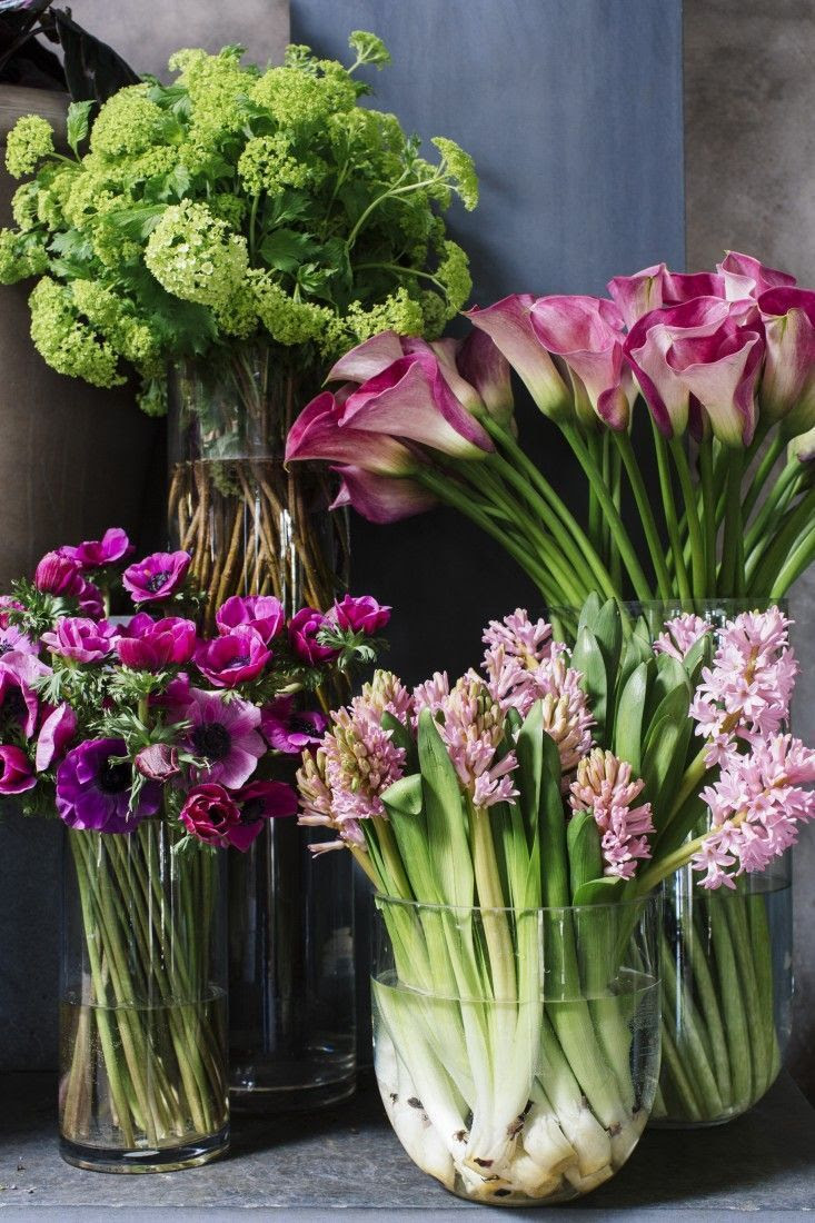 flowersgardenlove:  blooms Beautiful gorgeous pretty flowers