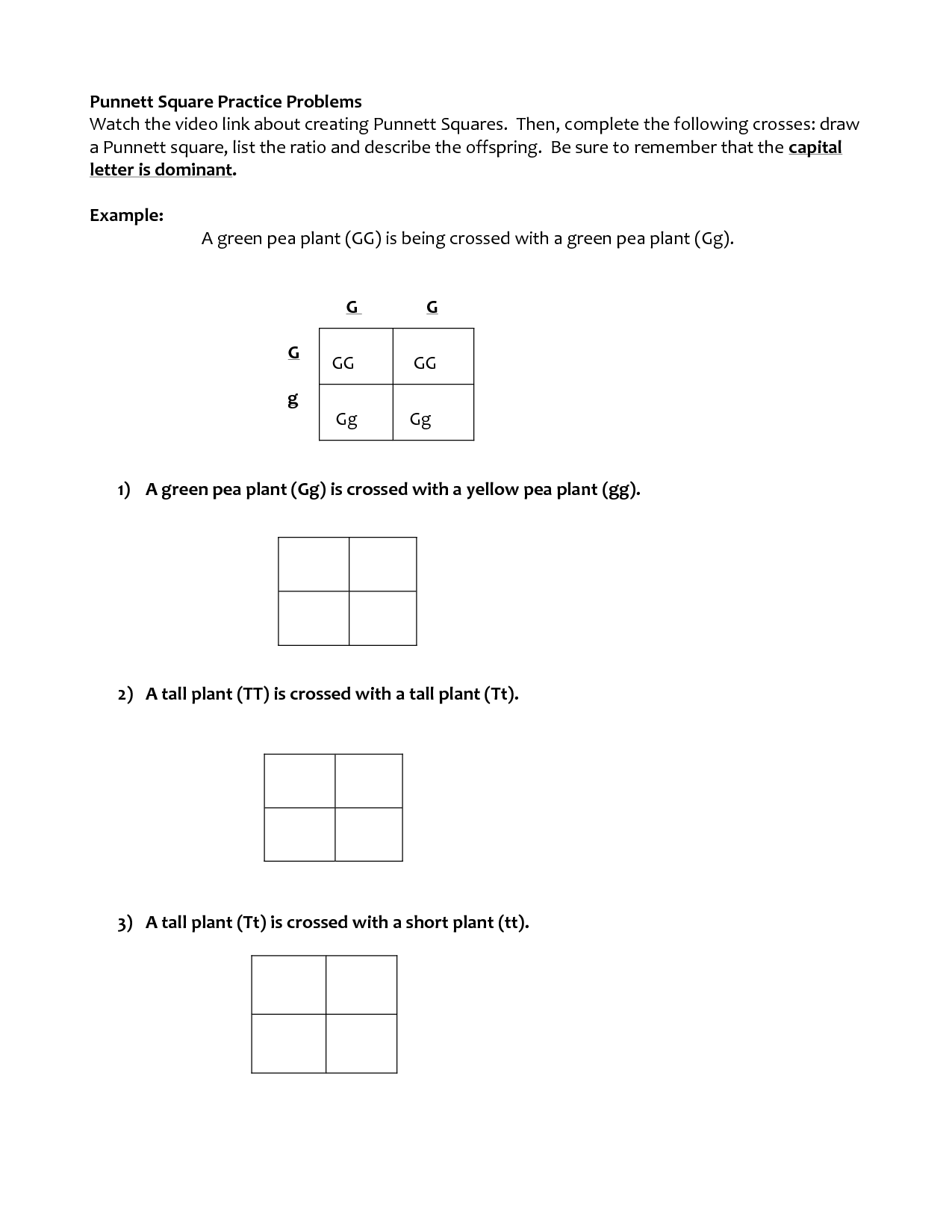 14 Best Images of Monohybrid Cross Worksheet Answer Key ...
