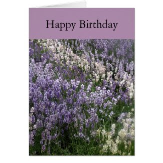 Beautiful Lavender Happy Birthday Card
