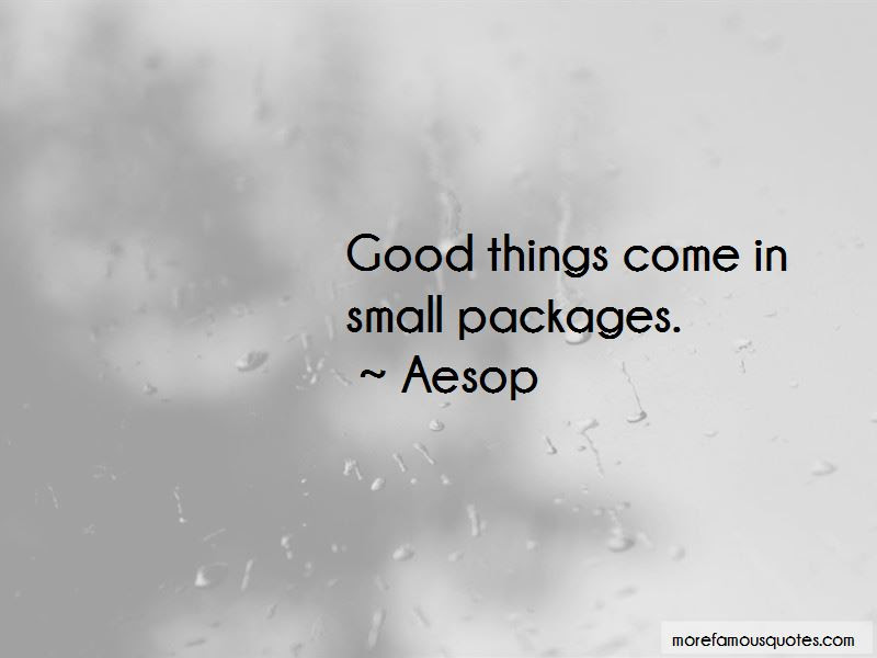 Best Things Come In Small Packages Quote Good Things Come In Small