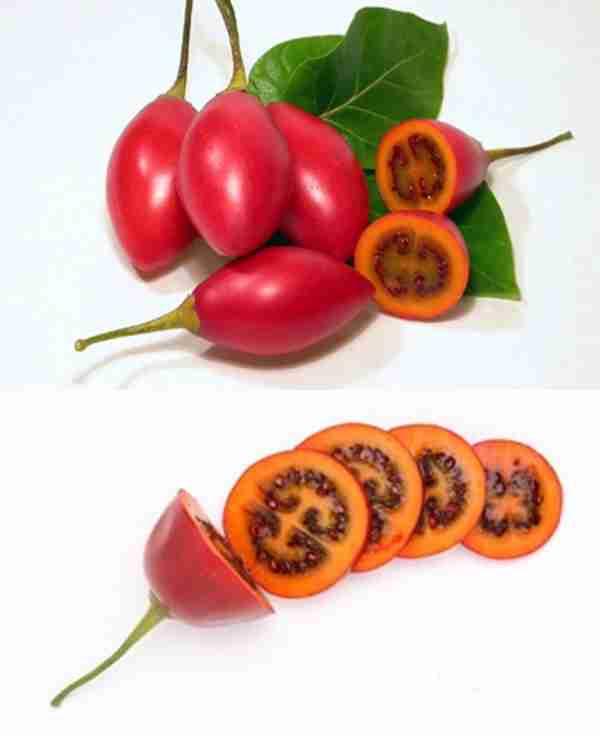 Τα 10 πιο παράξενα φρούτα σε όλο τον κόσμο