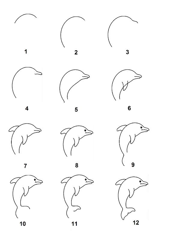 Tips Dan Trik Tutorial Menggambar Ilustrasi Hewan Untuk Pemula
