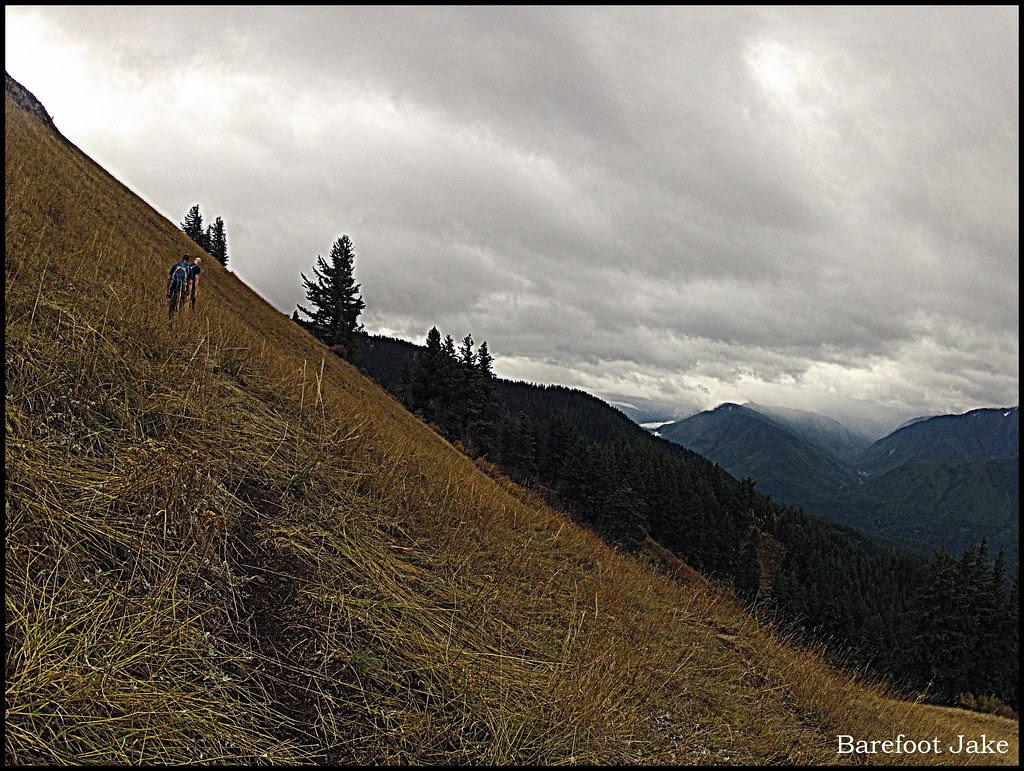 Elwha Hurricane Hill trail