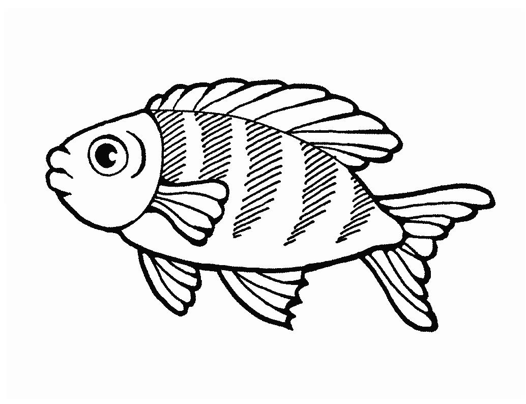 Quia - Class Page - fishoutline